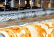 Halkalı halı yıkama